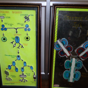 ACTIVITY-ORIENTED-INNOVATIVE-PROGRAM-–PREPARATION-OF-CHARTS-BY-STUDENTS.png