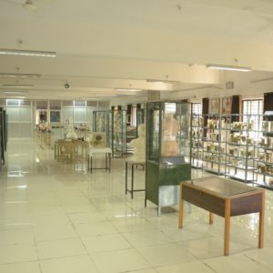 ANATOMY-MUSEUM